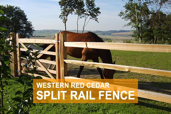 Shop Western Red Cedar Split Rail Fence